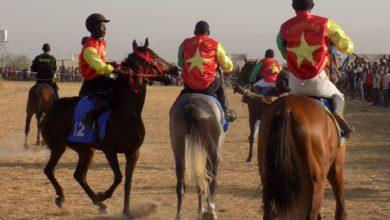 Photo of Grand Prix de l'amitié 2020: Le Tchad carbure, le Cameroun moins performant