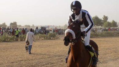 Photo of Mercato: Le cheval Ndjidda rejoint l'écurie Rashid Nakulma pour la somme de 20.000.000f CFA